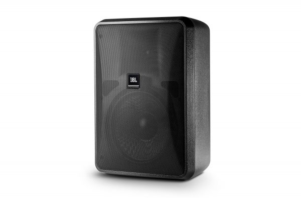 Control 28-1 High Output Indoor/OutdoorBackground/Foreground Speaker