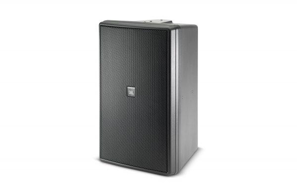 Control 30 Three-Way High Output Indoor / Outdoor Monitor Speaker